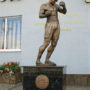 a Boxer(bronze)